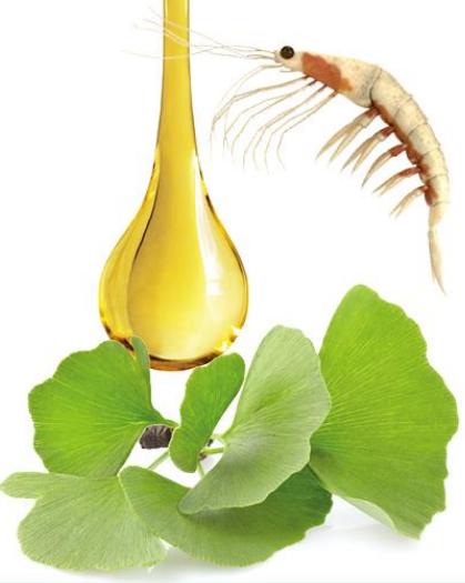 kril ulje sa ginkom